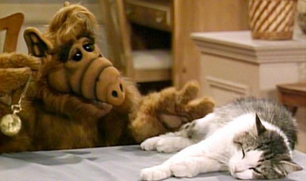 ALF y el gato de los Turner